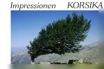 Impressionen Korsika